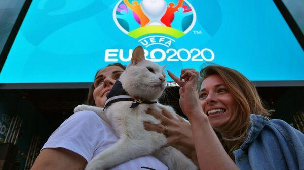 Эрмитажный кот-оракул Ахилл перед началом трансляции матча 1-го тура группового этапа чемпионата Европы по футболу 2020 между сборными Бельгии и России в футбольной деревне УЕФА Евро-2020 в Санкт-Петербурге.