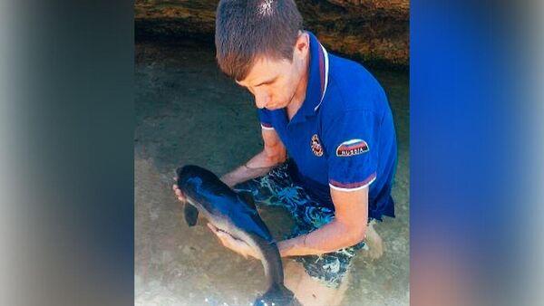 В Севастополе спасли застрявшего на мелководье дельфиненка