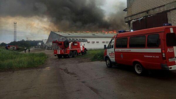 Пожар на птицефабрике в Челябинской области
