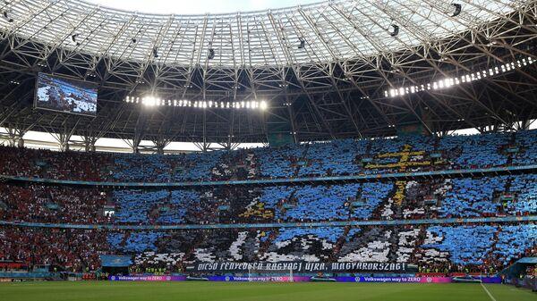 Перфоманс болельщиков сборной Венгрии
