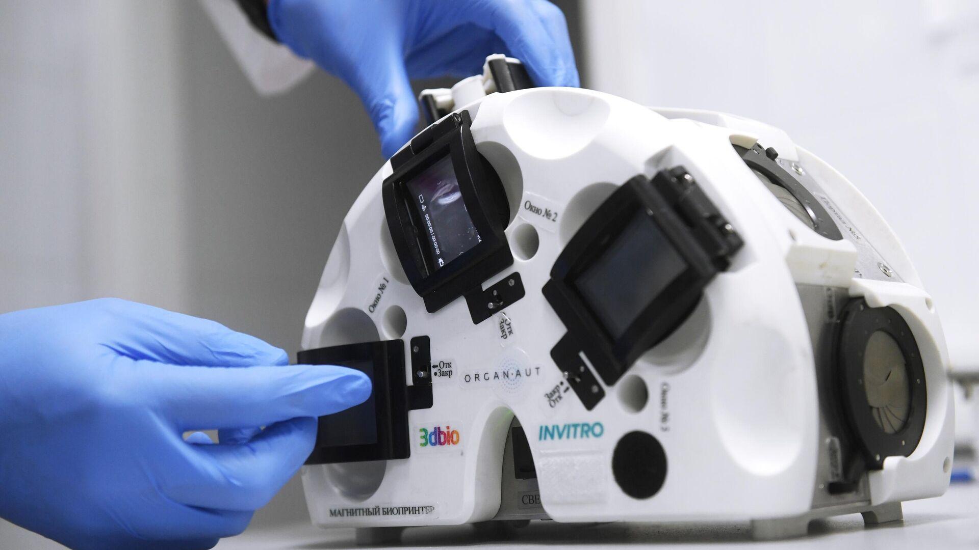 Российские ученые нашли способ удвоить скорость заживления переломов