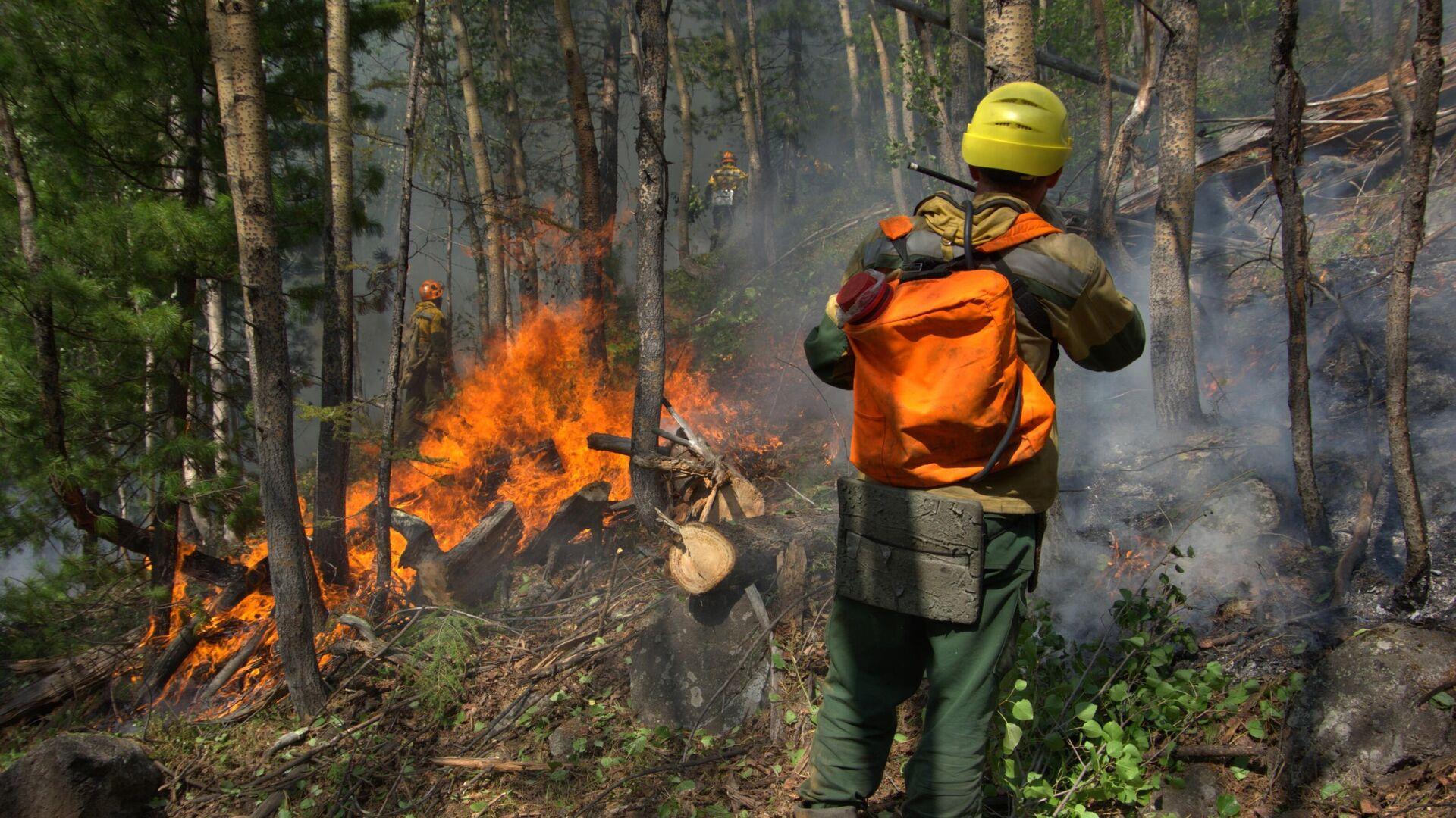 Лесопожарные службы потушили 28 пожаров в России за сутки