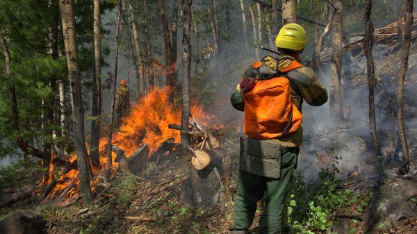 Сотрудники Авиалесоохраны проводят противопожарные мероприятия для препятствия распространению лесных пожаров в Якутии