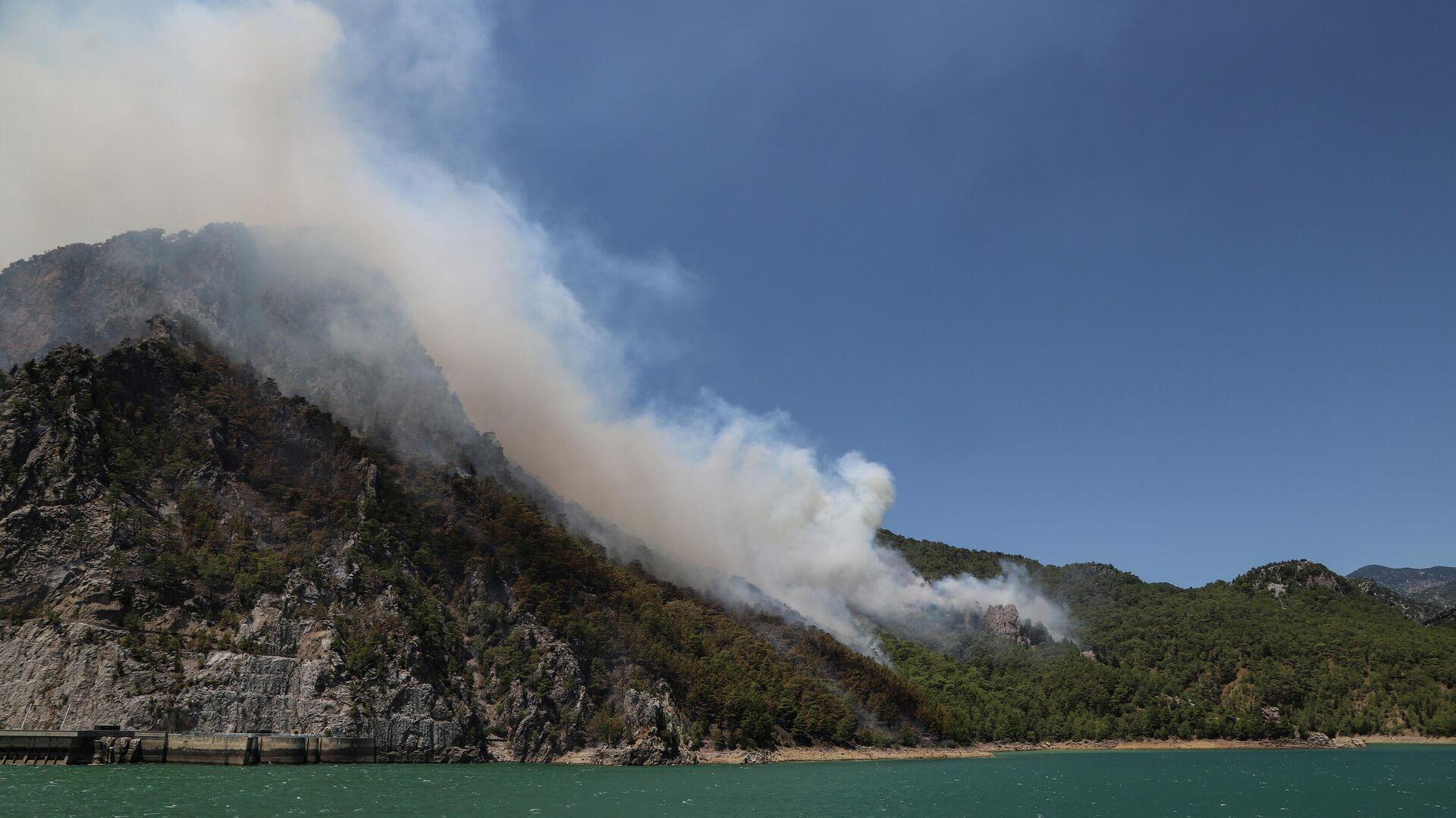 В Самарской области сгорели 18 домов из-за лесного пожара