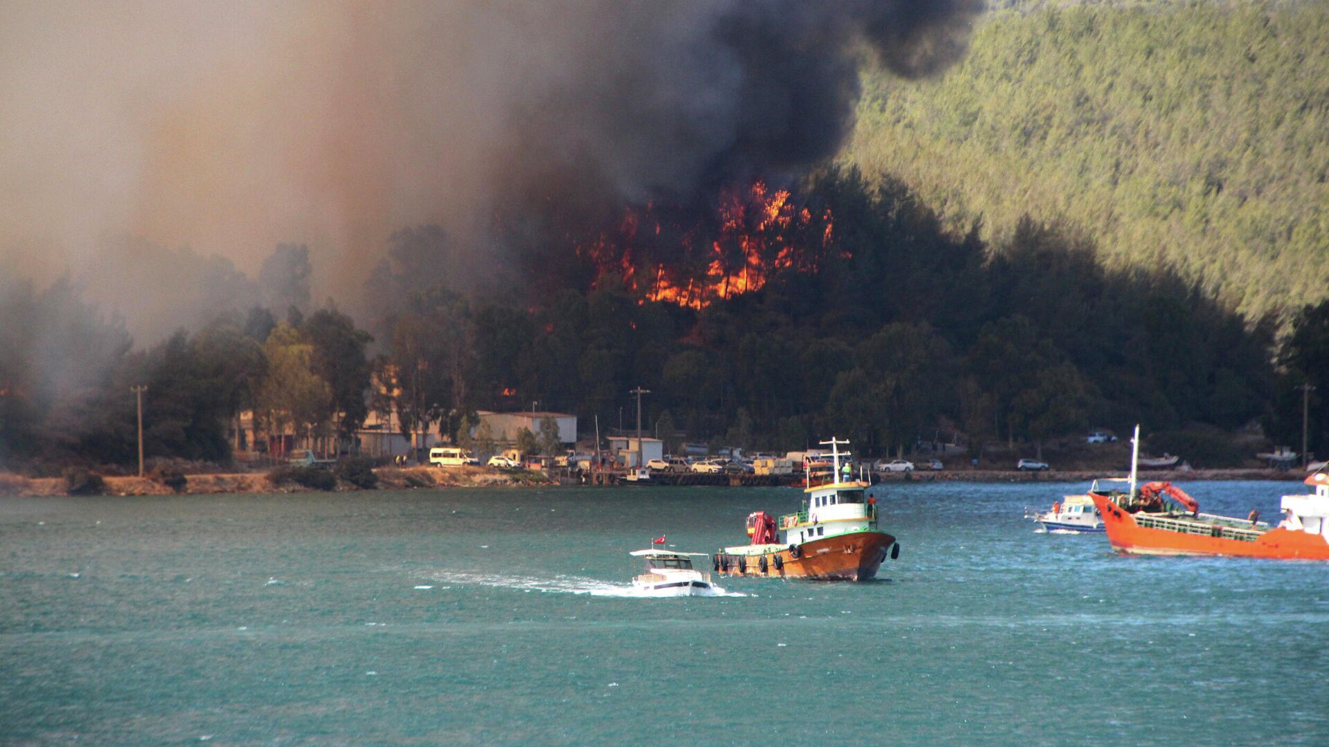 Дым поднимается от лесного пожара в прибрежном городе Бодрум, Турция - РИА Новости, 1920, 02.08.2021