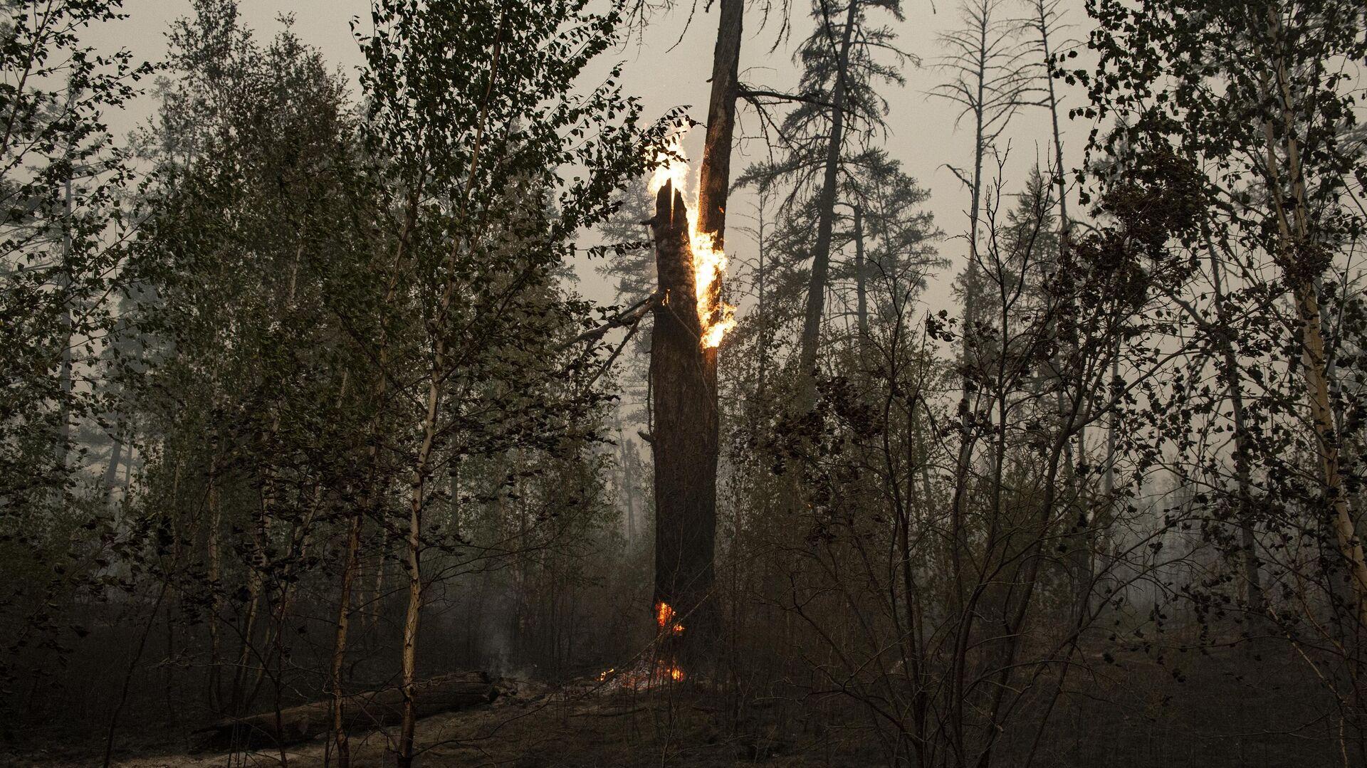 В Свердловской области возник новый очаг природного пожара