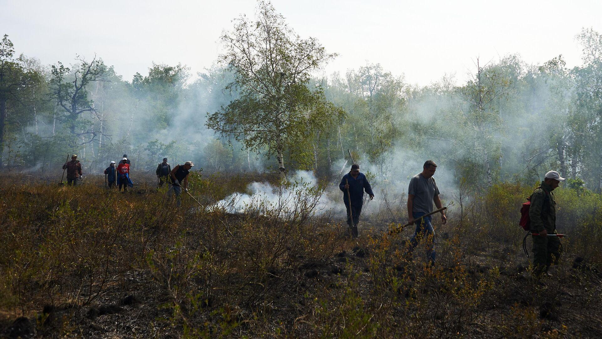 В России за сутки потушили 66 природных пожаров