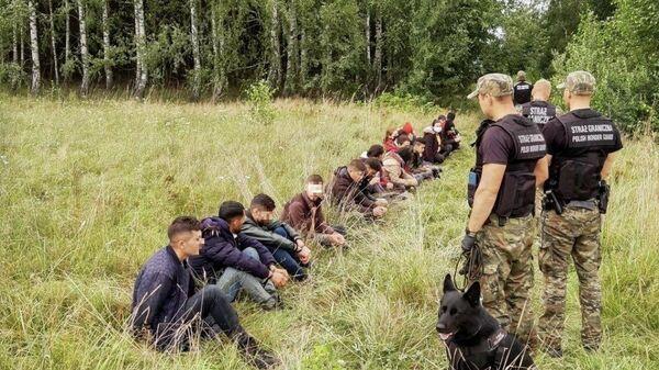 Польские пограничники задерживают людей, пытающихся пересечь границу между Белоруссией и Польшей