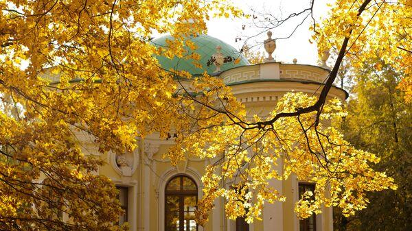 Золотая осень в Кусково