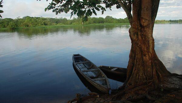 Река Амазонка в Колумбии, архивное фото