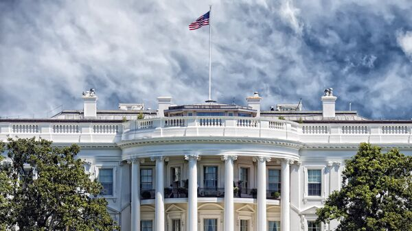 Белый дом США в Вашингтоне. Архивное фото