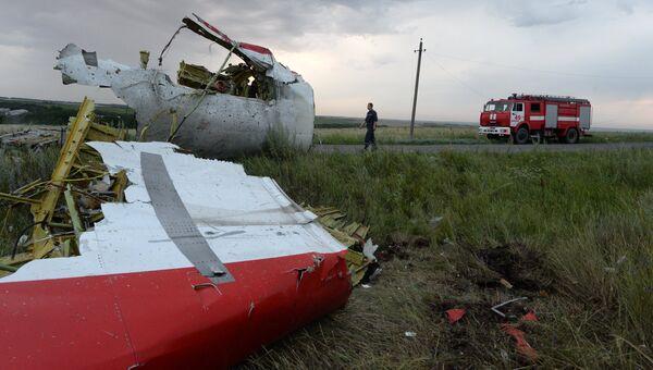 Крушение малайзийского Boeing на Украине. Архивное фото