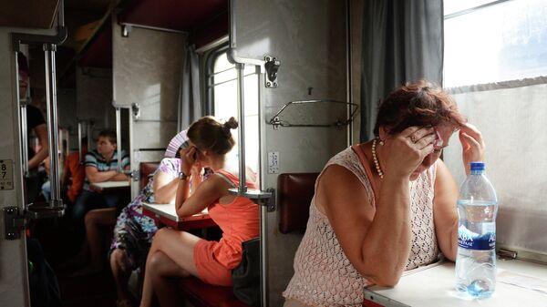 Пассажиры в вагоне поезда Москва - Симферополь