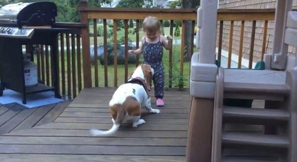Видео в YouTube: девочка танцует с собакой