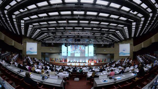 Сессия Парламентской ассамблеи Организации по безопасности и сотрудничеству в Европе (ОБСЕ). Архивное фото