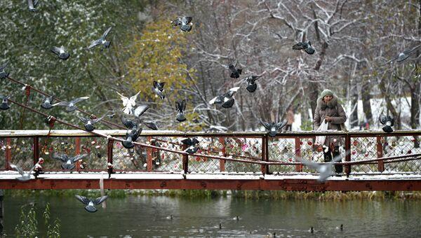 Мост в Харитоновском парке в Екатеринбурге