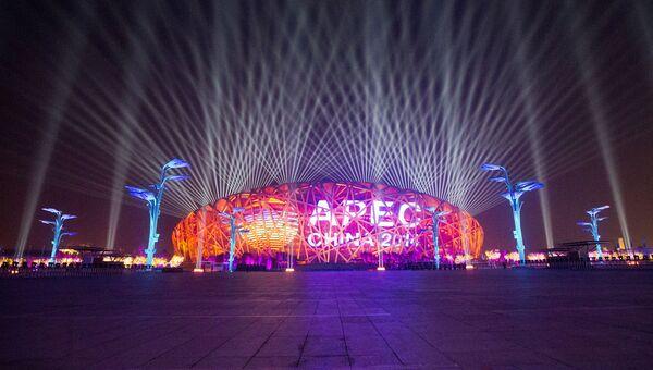 Иллюминация над стадионом Птичье гнездо в Пекине, где проходит саммит АТЭС