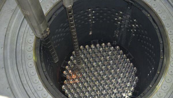 Загрузка ядерного топлива в реактор третьего блока Ростовской АЭС. Архивное фото