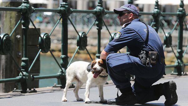 Полицейский кинолог в Австралии, архивное фото
