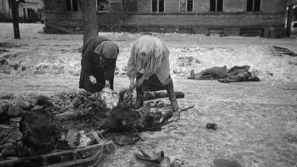 Блокадный Ленинград. Женщины собирают останки убитой лошади и грузят на сани, чтобы потом использовать мясо в пищу