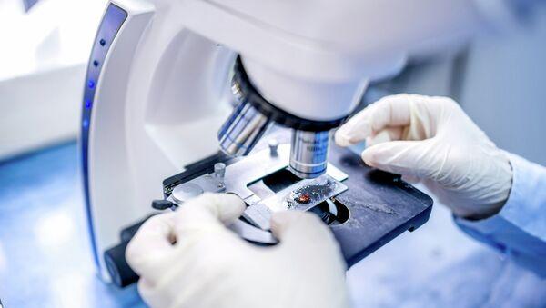 Ученый работает с микроскопом