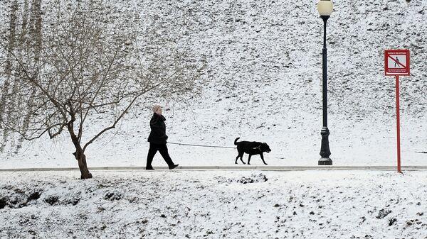 Женщина гуляет с собакой в парке у Новодевичьего монастыря в Москве