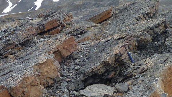 Породы на острове Шпицберген, в которых ученые нашли следы шестого массового вымирания животных