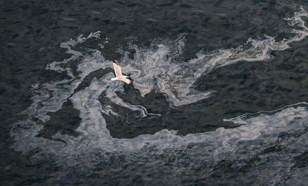 Масляные следы от затонувшего траулера Олег Найденов. Архивное фото