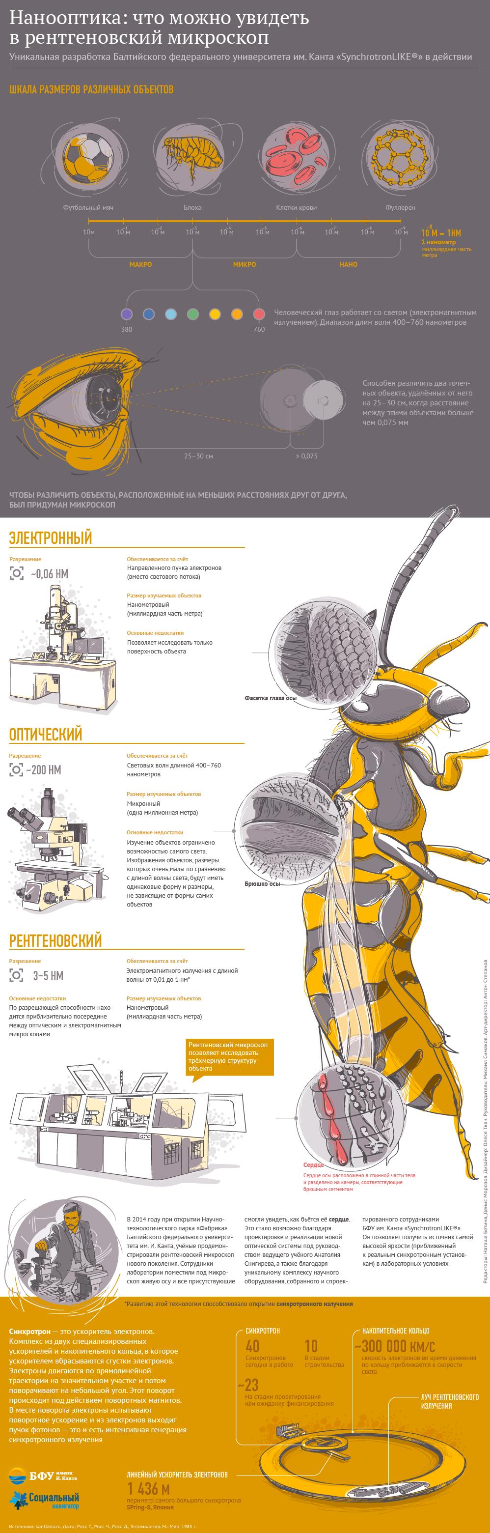 Нанооптика: что можно увидеть в рентгеновский микроскоп