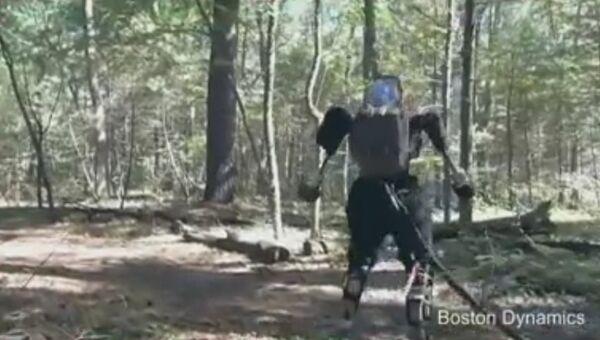 Робот по лесу идет