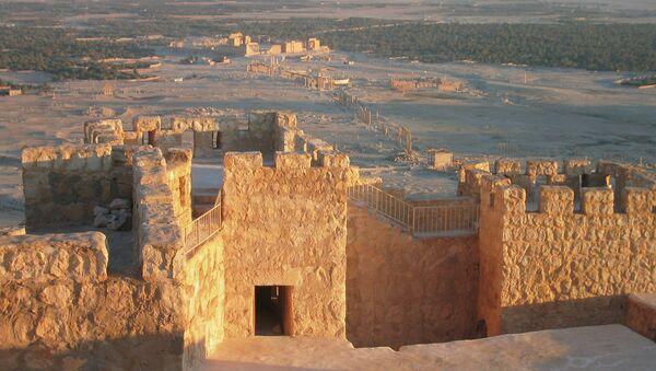 Развалины древнего города Пальмира. Архивное фото