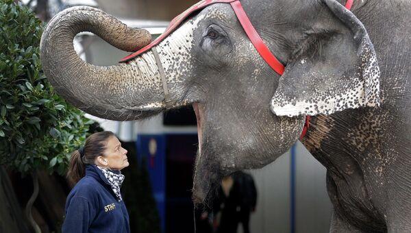 Принцесса Монако Стефания во время 39-го Международного фестиваля циркового искусства в Монте-Карло