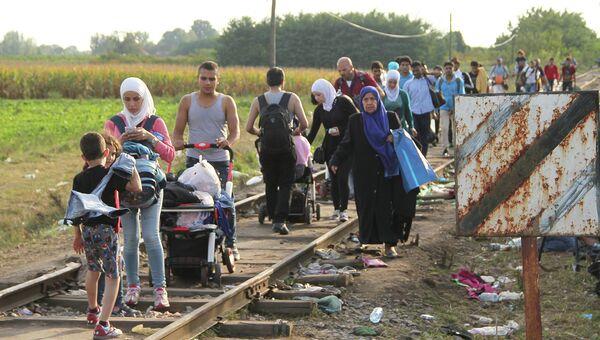 Беженцы на сербско-венгерской границе. Архивное фото