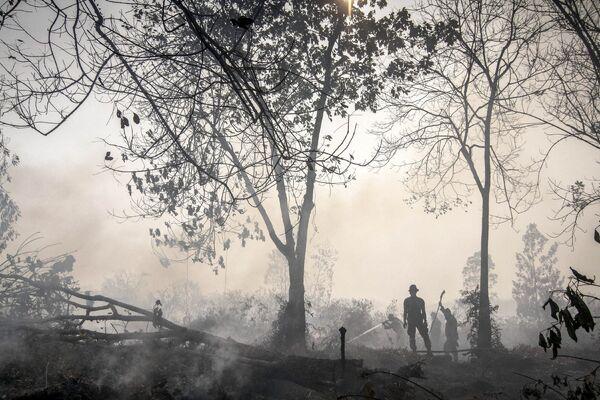 Индонезийские полицейские принимают участие в тушении торфяных пожаров на Суматре