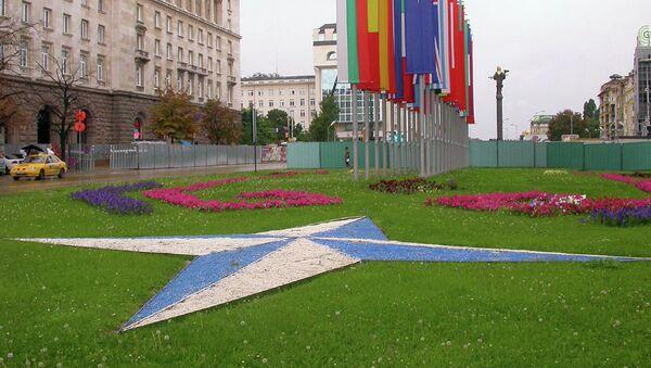 Эмблема и флаги стран-членов НАТО в Софии, Болгария
