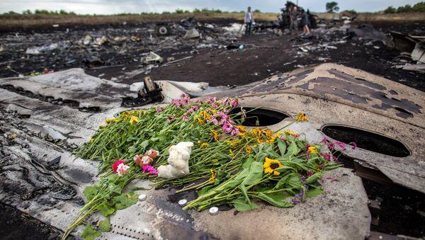 Цветы на фюзеляже лайнера Boeing 777 Малайзийских авиалиний, потерпевшего крушение в районе города Шахтерск Донецкой области. Архивное фото