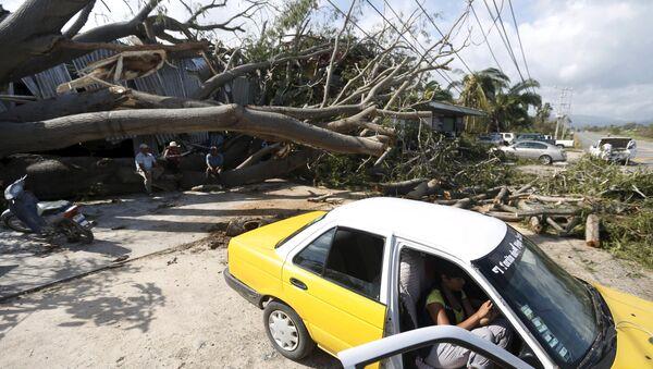 Ураган Патрисия повалил деревья в Мексике