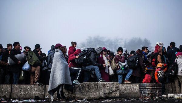 Беженцы на границе Словении и Австрии