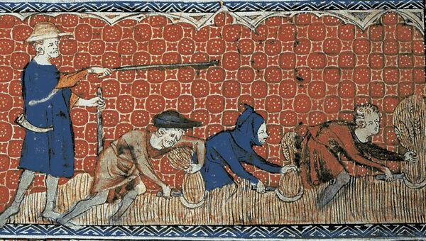 Работники в поле. Средневековая миниатюра