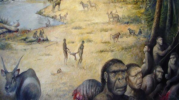 """Ученые нашли в Эфиопии останки древнейшего """"обезьяночеловека"""""""