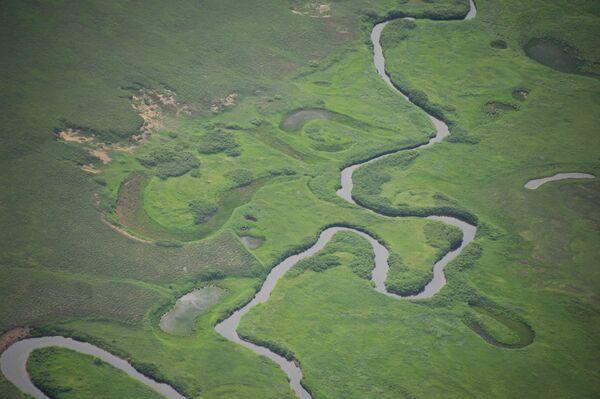Вид на одну из рек в Кроноцком государственном природном биосферном заповеднике