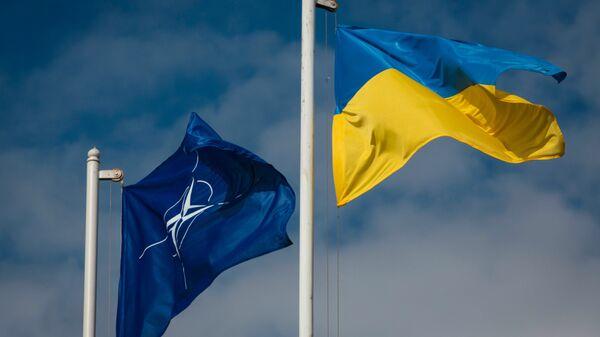 Флаг Украины и флаг НАТО. Архивное фото