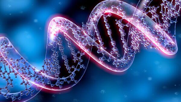 Модель молекулы ДНК. Архивное фото