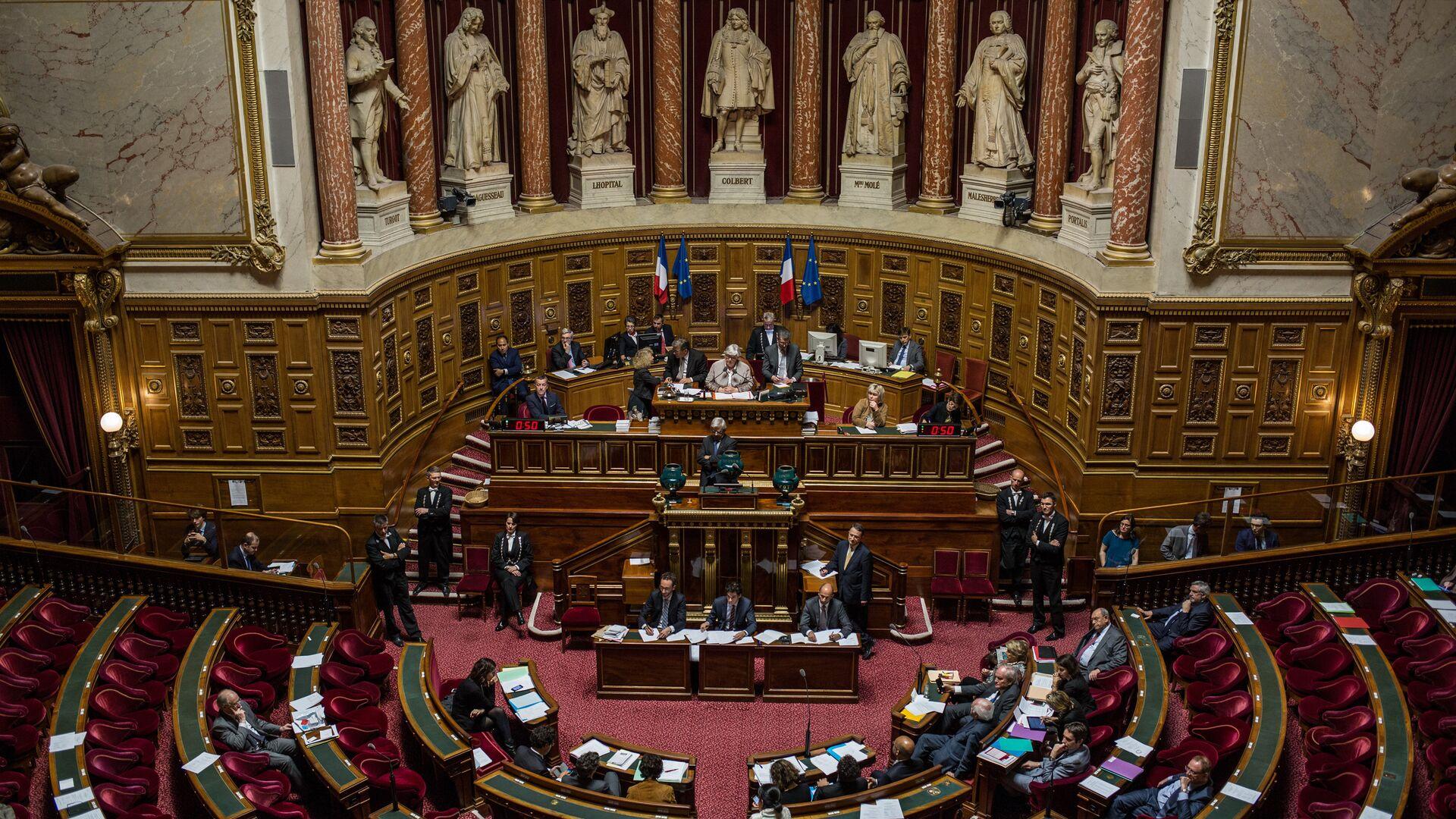 Сенат Франции проголосовал за смягчение санкций против России - РИА Новости, 1920, 19.11.2020
