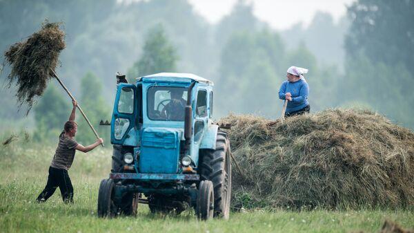 Жители деревни Баженово Омской области во время заготовки сена