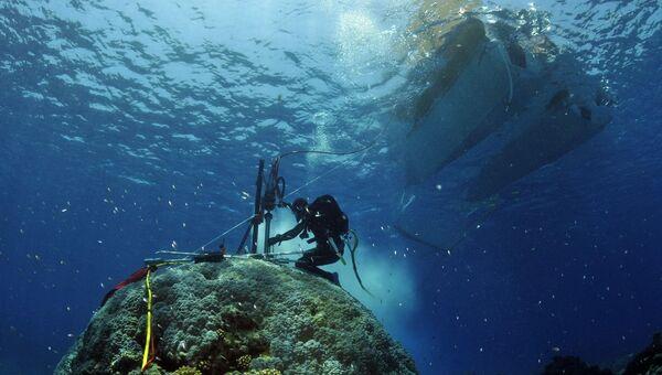 Ученые собирают образцы кораллов 19 века