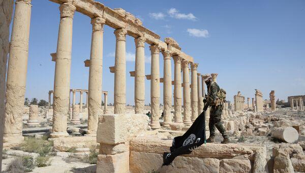 Боец отряда народного ополчения Соколы пустыни держит флаг запрещенной в РФ ИГИЛ, в исторической части Пальмиры. Архивное фото