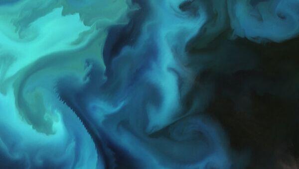 Скопление планктона в Баренцевом море,