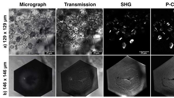 Фотографии кристалла белка, полученные при помощи новой методики
