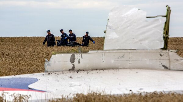 Спасатели выносят тела погибших и обломки самолета Boeing 777 Малайзийских авиалиний. Архивное фото